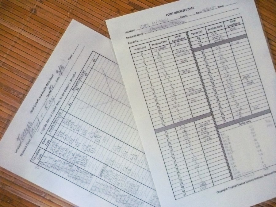 Dive volunteer survey sheets
