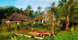 Bali Coral reef rebuilding-  Food and Facilities