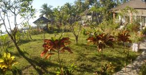 Garden view from teaching area