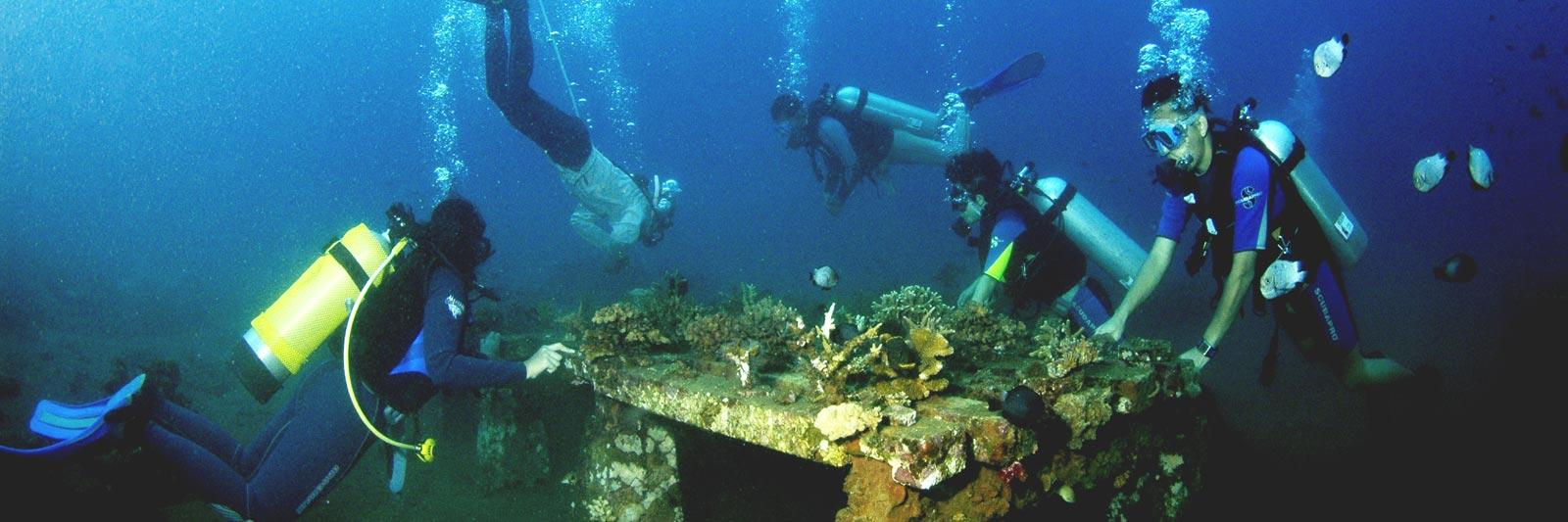 Sea Communities